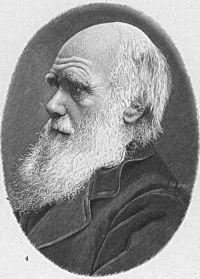<b>l'evoluzione e l'incerto futuro dell'uomo</b>
