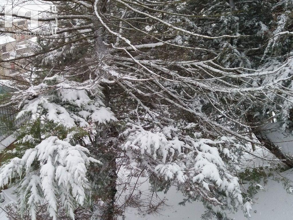 Epifania con la neve,