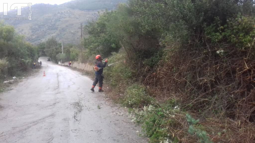 Operai forestali impiegati presso i siti del comune di Alia