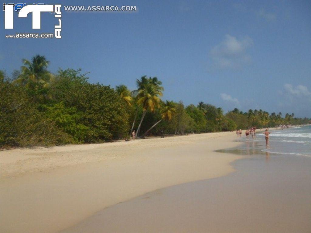 Isole Caraibiche - Crociera da sogno..Il modo migliore per festeggiare il mio compleanno.,