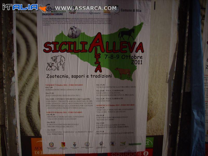 SICILIALLEVA - ALIA 7 - 8- 9 OTTOBRE 2011