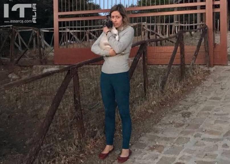 BCSICILIA ESPRIME SOLIDARIETÀ A MAGDA SCALISI PER LE INTIMIDAZIONI RICEVUTE