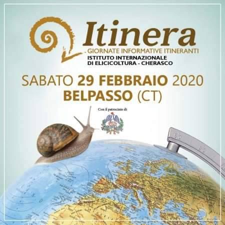 L`ISTITUTO IN TOUR: LE NOSTRE CHIOCCIOLE SBARCANO IN SICILIA!