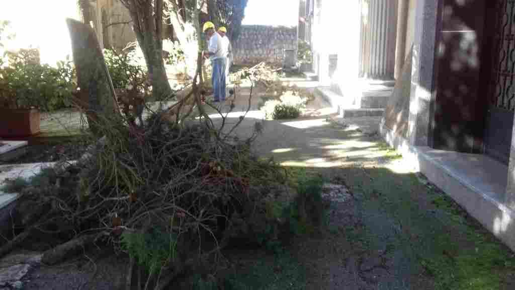 Operai forestali impiegati preso i siti del comune di Valledolmo