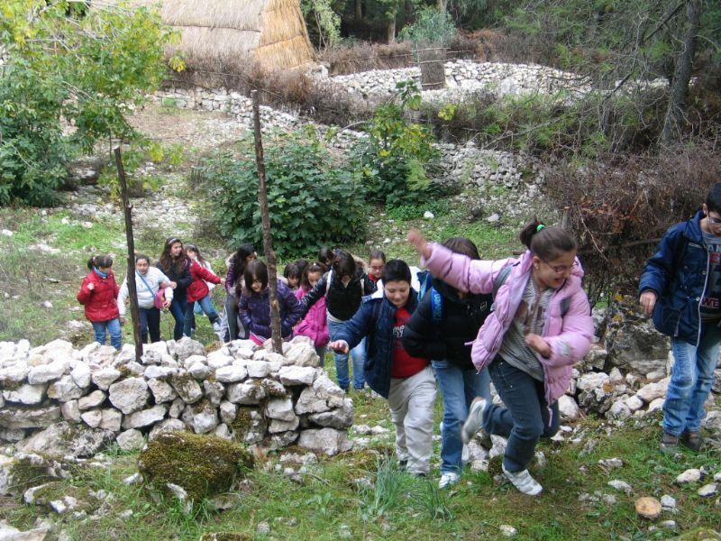 CASTRONOVO DI SICILIA (PA) - Alunni della scuola alla scoperta del bosco della zona ?Comuni?