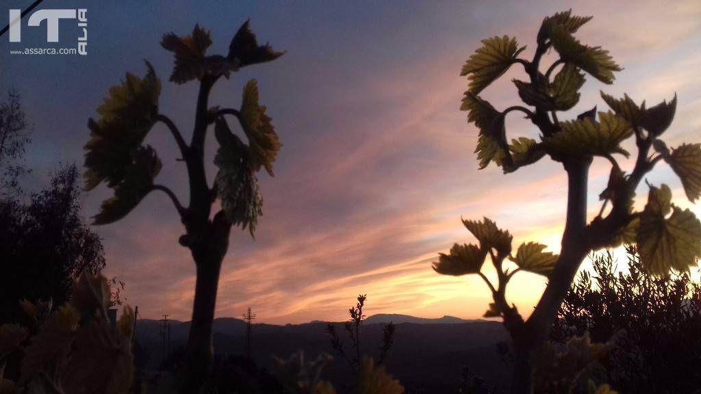 Ogni tramonto ha il suo fascino.