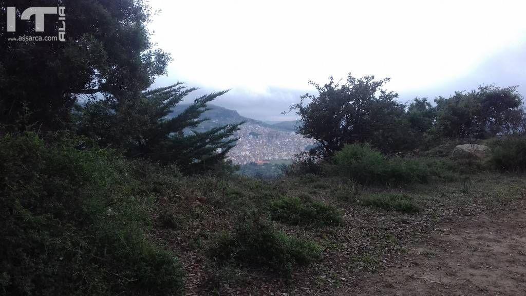 SULLO SFONDO L ALIA