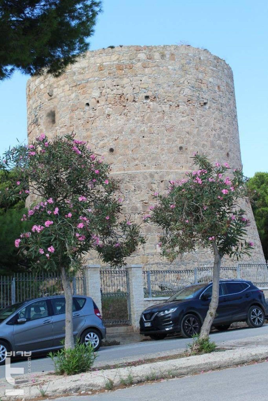 Torre Araba