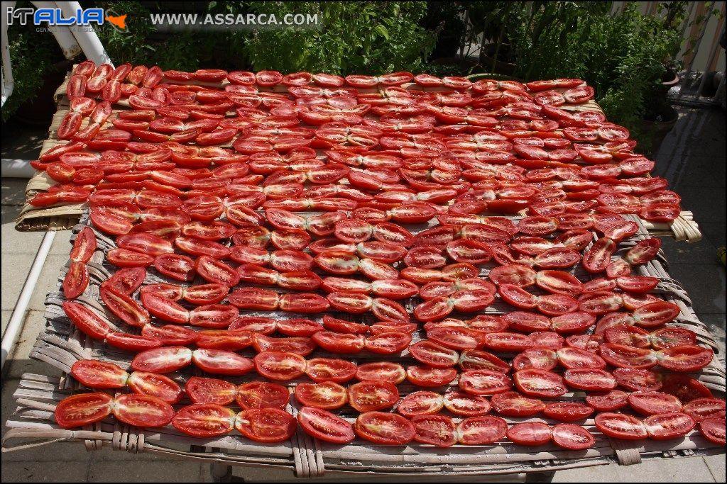 essiccazione pomodori