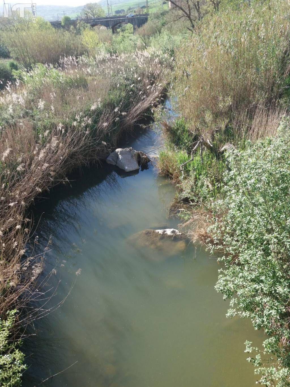 fiume torto