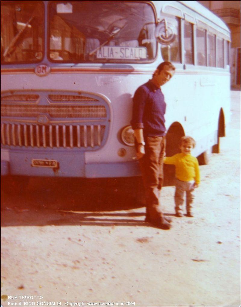 Bus Tigrotto