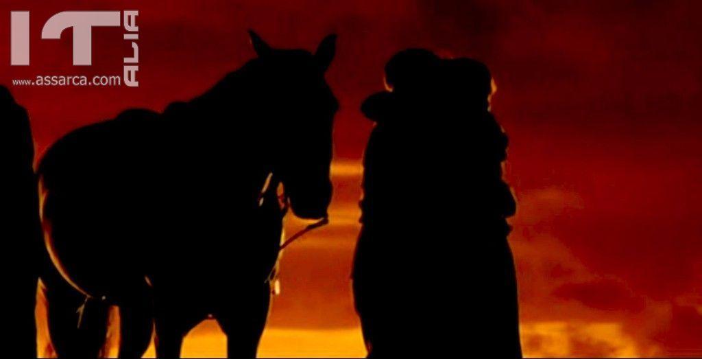 War Horse (tratta dal film)