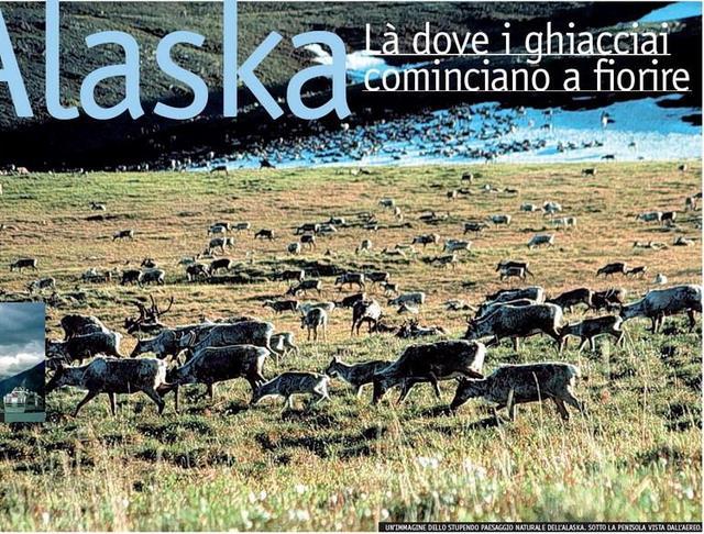 <B>ALASKA - LÀ DOVE I GHIACCIAI COMINCIANO A FIORIRE</B>