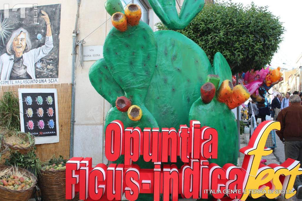 OPUNTIA FICUS - INDICA FEST  XIX SAGRA DEL FICODINDIA