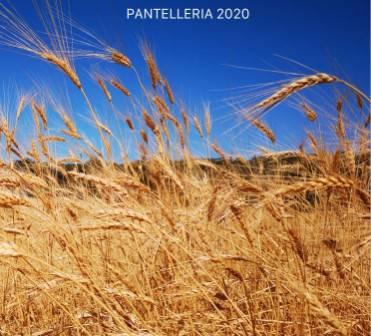 PANTELLERIA 2020 - Il protagonista assoluto per millenni è tornato a danzare.