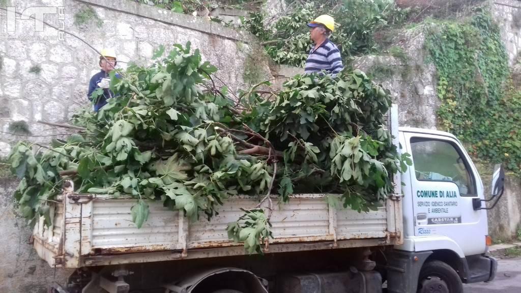 Manutenzione degli operai forestali.
