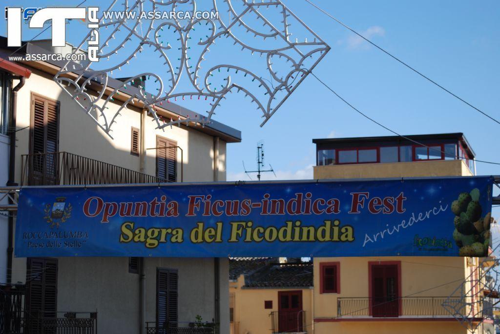 SAGRA DEL FICO D`INDIA - Roccapalumba - Ottobre 2013 (foto realizzate da Valeria Barcellona)
