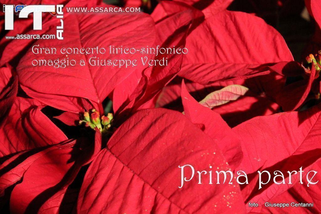 GRAN CONCERTO LIRICO SINFONICO OMAGGIO A GIUSEPPE VERDI ALIA 29 DICEMBRE 2013