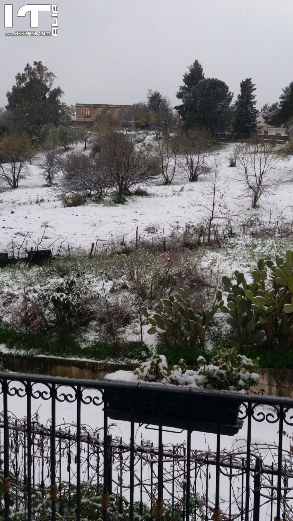 Epifania con la neve