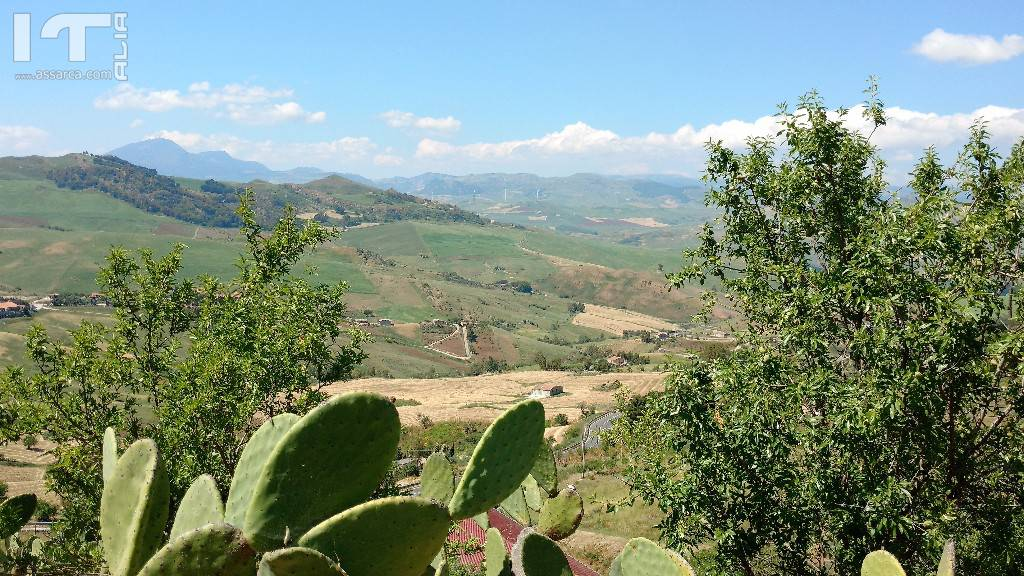 """Alia, zona  """"Camposanto Vecchio e dintorni """""""