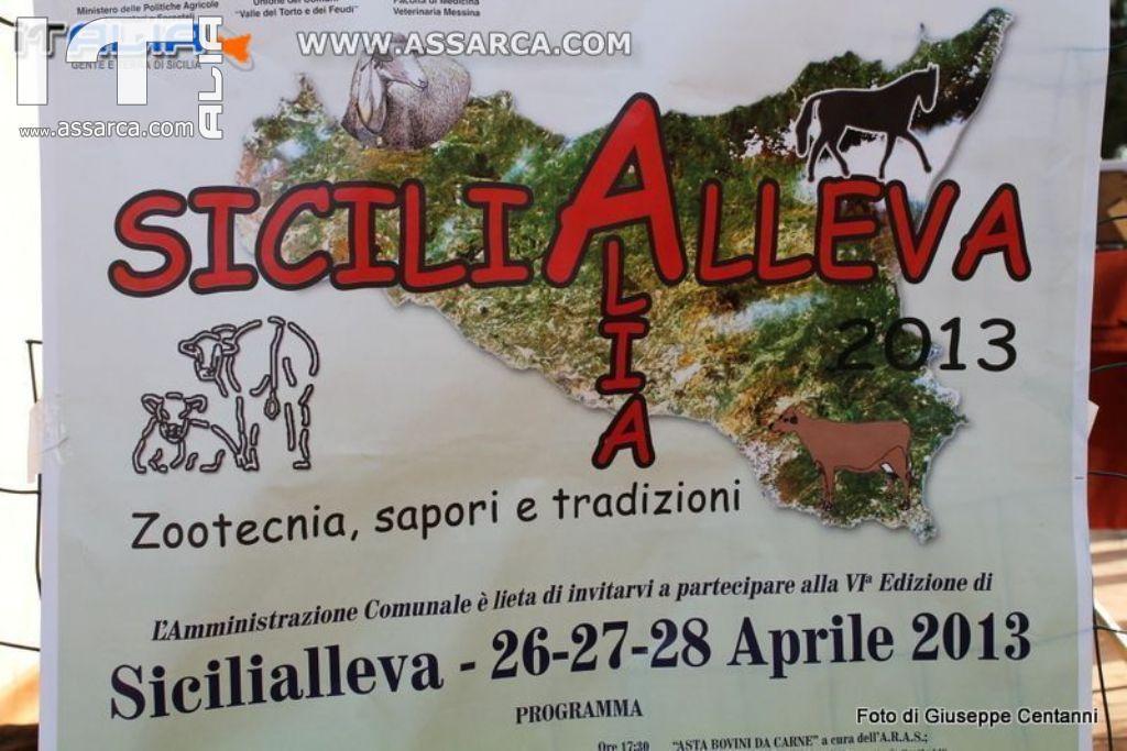 SICILIALLEVA  EDIZIONE 2013