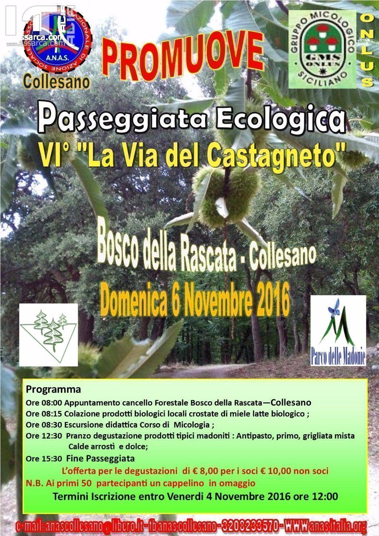 """Collesano. Domenica 6 Novembre 2016  6^ Passeggiata Ecologica """"La via del castagneto"""""""