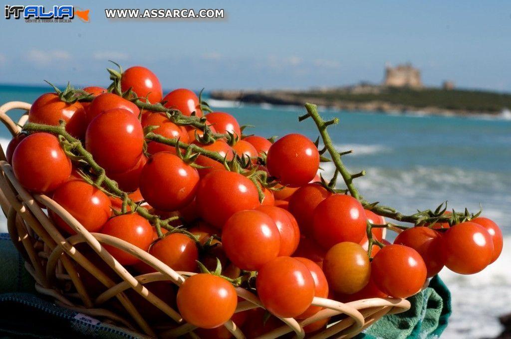 Arte, sport, musica e spettacolo per l'edizione 2015 della Festa del Pomodoro di Pachino Igp a Marzamemi