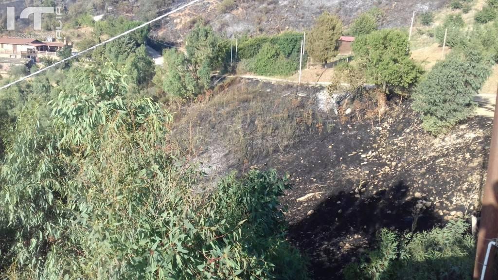 Alia piromani all`opera. Incendi in diverse aree del territorio