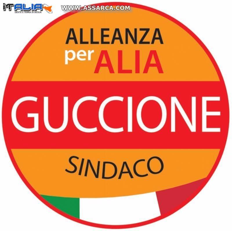 Alia - Servizio Civile - Guccione chiede invio atti ai Presidenti Mattarella, Renzi,Grasso, Boldrini e Prefetto di Palermo
