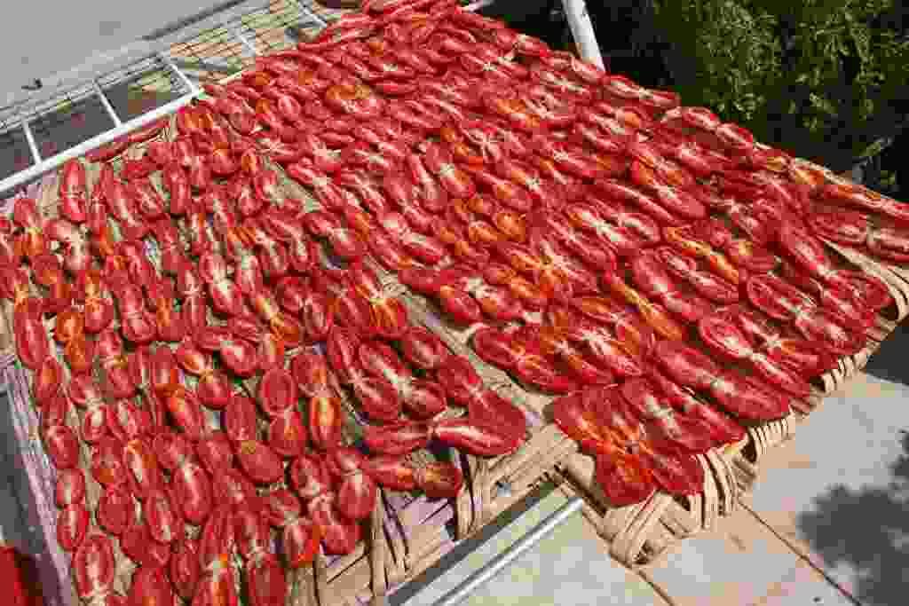 essiccazione dei pomodori