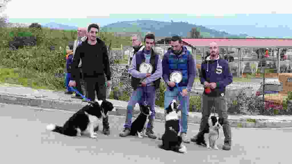 SiciliAlleva X^ edizione Alia contrada Bordone 12-13-14 Ottobre 2018  ultima parte
