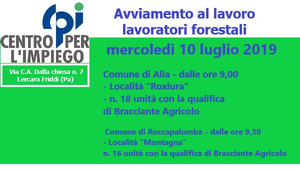 AVVIAMENTO AL LAVORO LAVORATORI FORESTALI 10 LUGLIO 2019 ORE 09:00