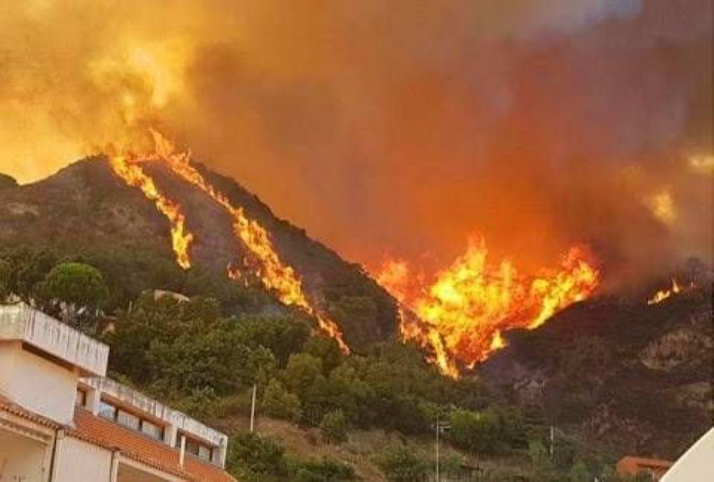 BCsicilia aderisce alla passeggiata contro gli incendi promossa da associazioni ambientaliste per domenica 9 agosto a Monte Cofano