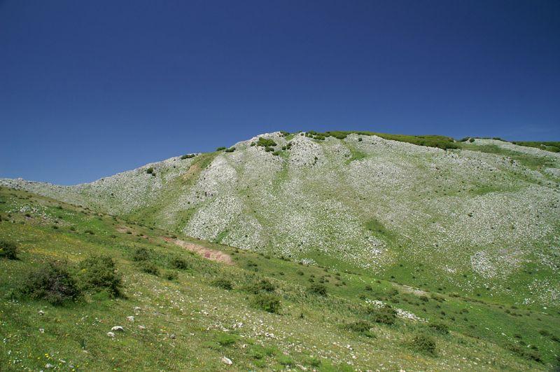 Gli itinerari naturalistici di SiciliAntica. Trekking sulle Madonie: Monte Cervi