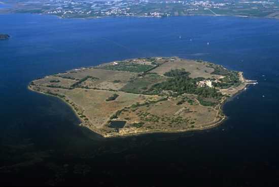 TERMINI IMERESE (PA) - L�Associazione SiciliAntica organizza una visita guidata all�isola di Mozia