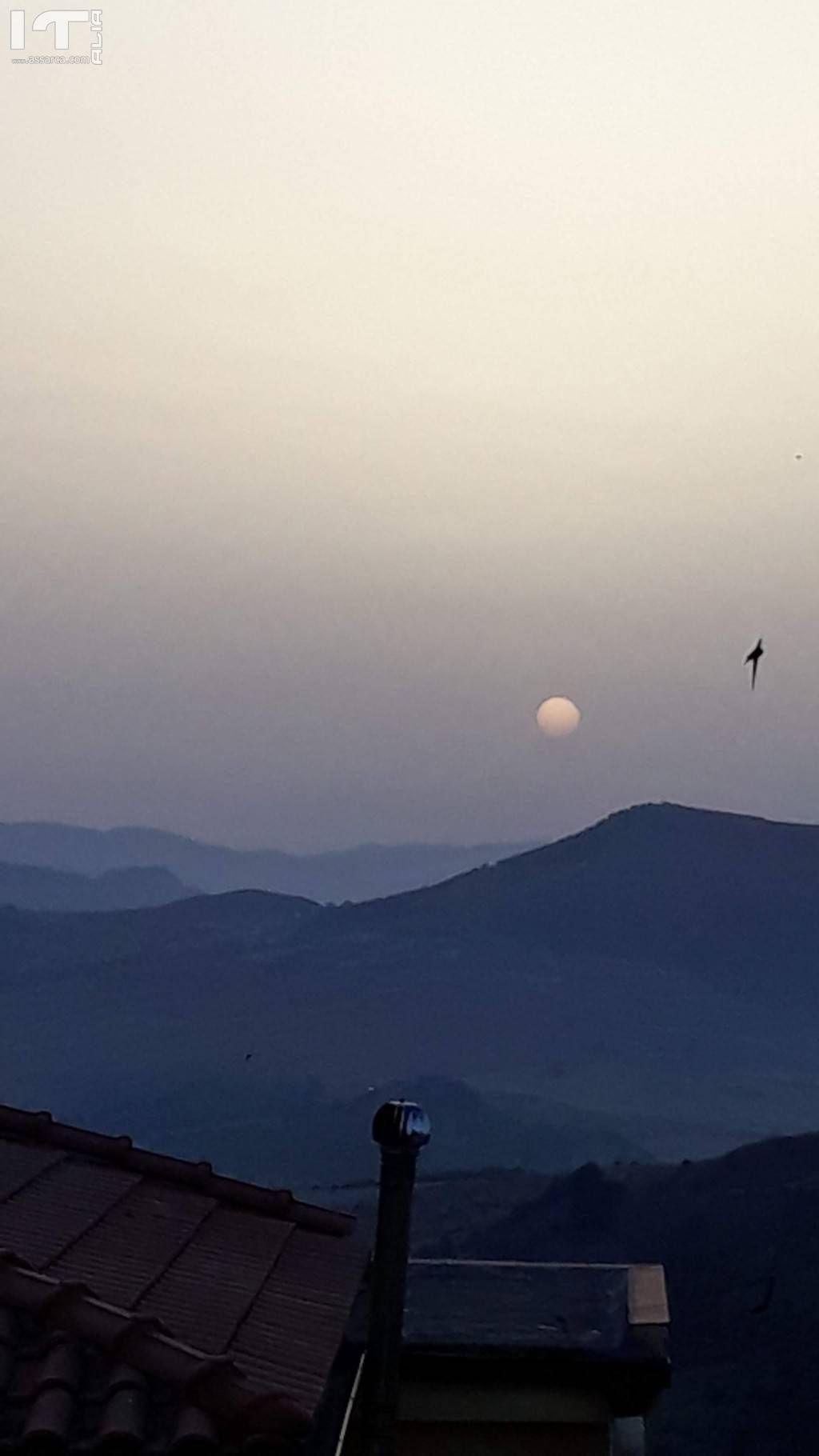Libertà... di volare