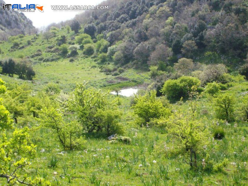 riserva naturale monte san calogero sciara