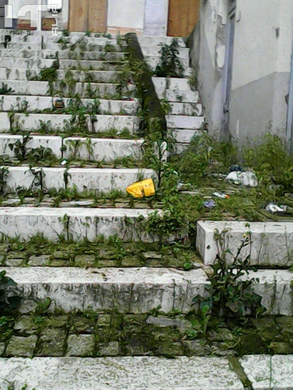 questa e alia citta giardino per i signori del comune questa e alia immondizia