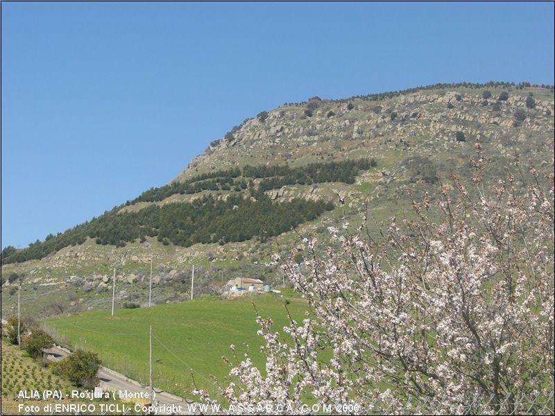 Roxjura ( Monte )